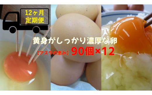 ◆12ヶ月定期便◆ 黄身がしっかり濃厚な卵【アスタの恵み】90個×12