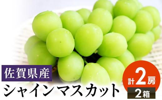 佐賀県産シャインマスカット 2房(1~1.2kg)×2箱