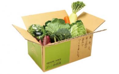 箱根西麓三島野菜