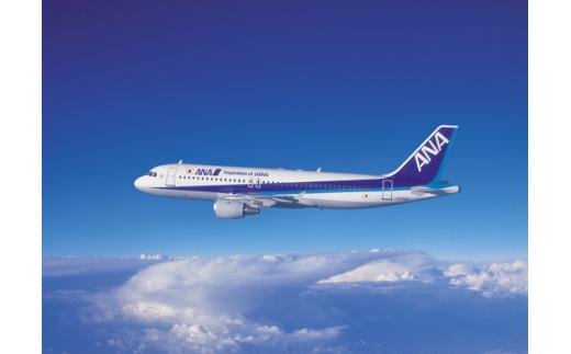 O-09 ANA大分空港往復航空券+市内宿泊セット・30000P補助