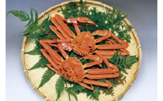 20050-04 松葉蟹C(2021年お届け)