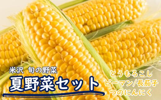 036-009 夏の野菜セット_BBQ野菜(トウモロコシ、ピーマン、長茄子、つのにんにく)_R2年産_7月~発送