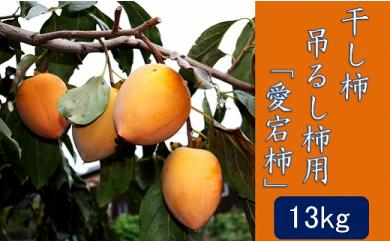 干し柿・吊るし柿用 「愛宕柿」約13kg