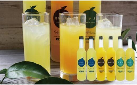 爽やか柑橘の濃厚ジュースセットB