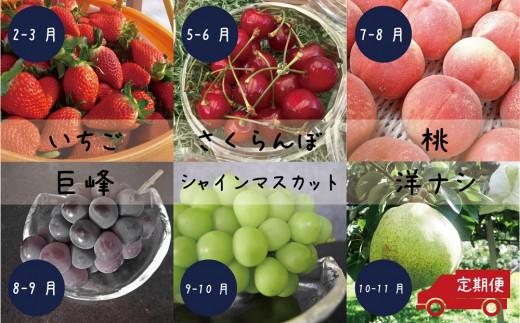 甲斐の旬のフルーツ(さくらんぼ、桃、シャインマスカット、巨峰、いちご、洋ナシ)6回お届け!定期便B