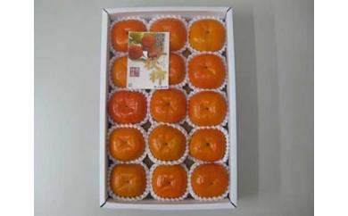 一番早い甘柿「早秋柿(そうしゅうがき)」約3kg