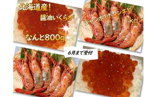 [I2-010]ジャンボボタンエビ1kg・いくら醤油漬け800g・辛子明太子250gのセット