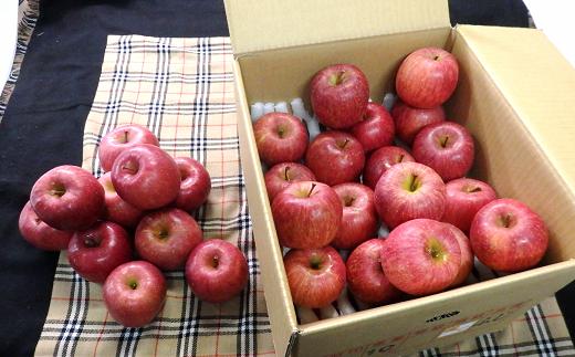 696-R2【令和3年1月発送】雪んこ 完熟みつ入りふじりんご 約10kg