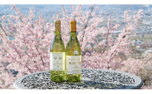 B2-614.勝沼ぶどうの丘推奨 白ワイン2本セット