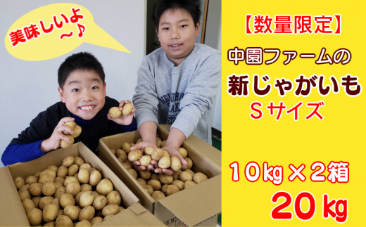 20kgのじゃがいもは、写真の2箱の量が届きます!たくさん食べてください!