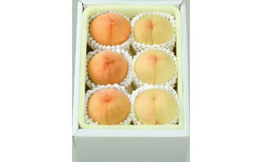 A-72a  ご家庭用 おかやまの白桃と黄金桃の食べ比べセット 約1.5kg(予約受付)