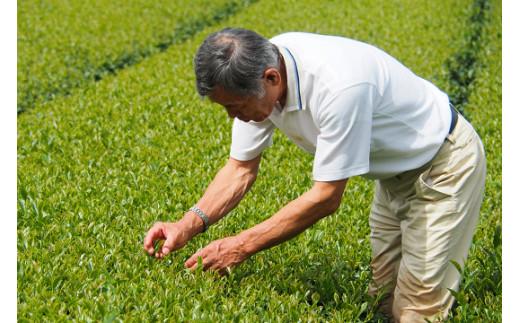 使用茶葉(一~二番茶芽)には、農薬を使用しない減農薬農法を採用しています。