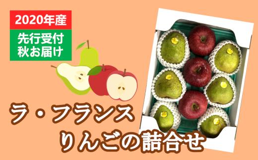 【先行受付】ラ・フランスとりんごの詰合せ_R2年産_11月中旬頃からお届け_3kg