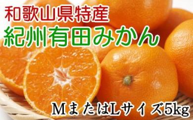 ■[厳選]紀州有田みかん5kg(MサイズまたはLサイズのいずれかをお届け・赤秀品)