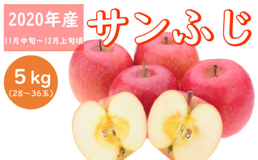 【先行受付】甘酸っぱいサンふじ(りんご)_R2年産_5kg_11月中旬頃からお届け