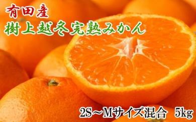 ■【濃厚・まろやか】有田産樹上越冬完熟みかん5kg(2S~Mサイズ混合・赤秀)