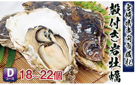 《数量限定》濃厚な味わい【串間産殻付 岩牡蠣(加熱用)】18~22個 L-D2