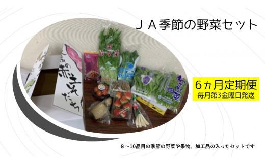 【6ヵ月定期便】JA季節の野菜セット(毎月1回 計6回発送)
