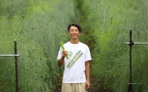夏採りたてアスパラガス約1.2kg