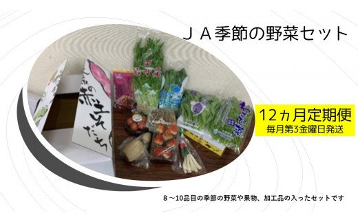 【12ヵ月定期便】JA季節の野菜セット(毎月1回 計12回発送)