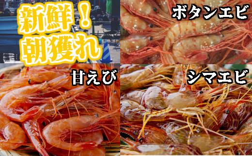 [I2-002]【北海道内発送限定】新鮮えび三昧 定期便