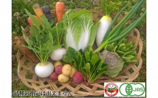 [№5220-0031]旬の『おかやま有機無農薬認証野菜』セット 7~12種類