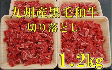 HA38-11 復刻!九州産黒毛和牛切り落とし 1.2㎏