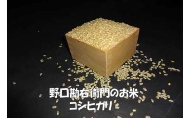 【元年産】野口勘右衛門のお米 「安心栽培米(コシヒカリ)」玄米30㎏