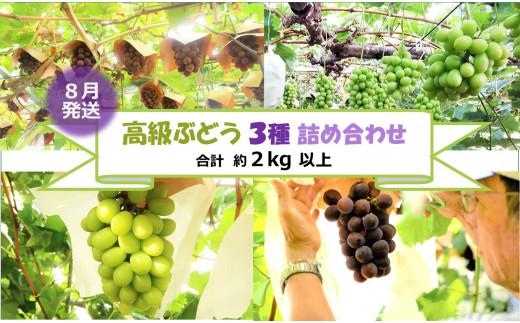 F0002.【貝塚市産】高級ぶどう3種詰合せ約2kg【数量限定】