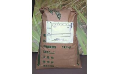 【令和元年産】美浦の逸品「コシヒカリ」一等米玄米10kg
