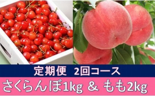 【先行予約】No.0236 【全2回】初夏と夏のお届け物 さくらんぼ1kg&もも2kg