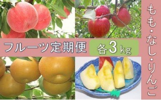 No.0311 先行予約【全3回】フルーツ定期便もも・なし・りんご各3kg