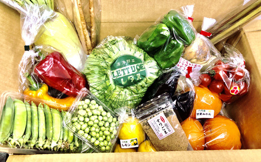 生産者直売所よりお届け!おまかせ旬のお野菜・果物セット!