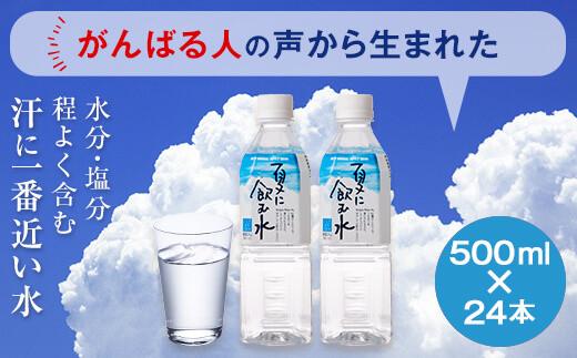 A-312 夏に飲む水 500mlペットボトル 24本