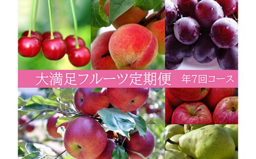 【先行予約】No.0047 大満足フルーツ定期便