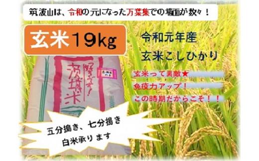(B735) つくば山麓厳選コシヒカリ(恋瀬姫の舞)玄米19㎏【令和元年産】