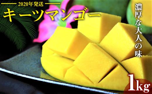 【2020年発送】濃厚な大人の味 沖縄県「キーツマンゴー」1kg