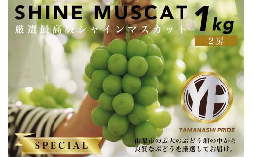 2602 YAMANASHI PRIDE【スペシャル】 シャインマスカット 2房(約1kg)