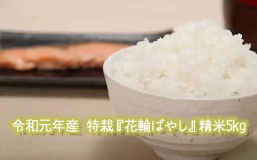 令和元年産 特栽『花輪ばやし』精米5kg 【安保金太郎商店】