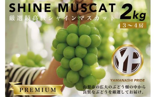 2604 厳選最高級シャインマスカット約2kg(3〜4房)YAMANASHI PRIDE【プレミアム】
