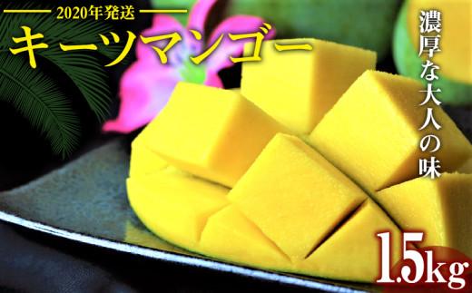 【2020年発送】濃厚な大人の味 沖縄県「キーツマンゴー」1.5kg