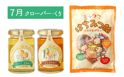 【定期便 年6回 奇数月】蜂蜜165g×12種類が味わえる+蜂蜜あめ袋