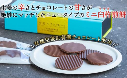 【予約】百寿ひとひら(有機生姜×有機チョコレート)計24枚