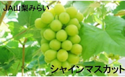 A1512シャインマスカット2房【2020年発送分 富士川町産】