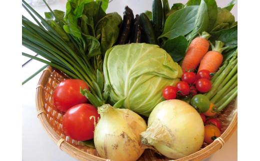 【H-6】白石産 旬の野菜詰め合わせセット