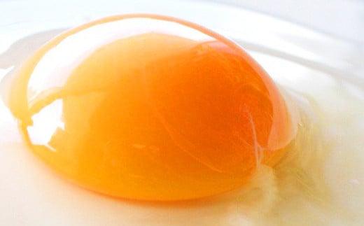 卵かけごはん専用 あさひ卵 L玉サイズ×30個(25個+破損保証5個)
