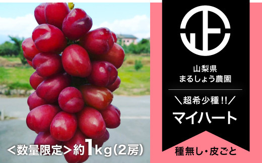 B0-054 【数量限定】マイハート 2-3房 約1.0㎏ 9月~10月発送