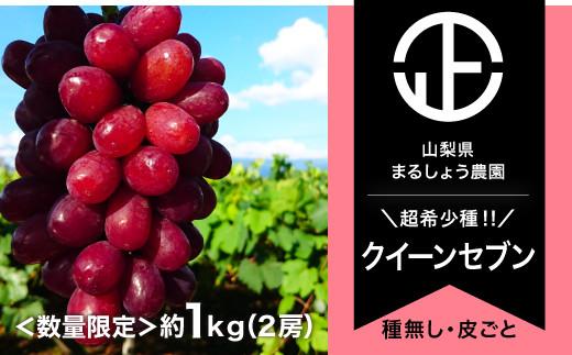 B0-053 【数量限定】クイーンセブン2-3房 約1.0㎏ 8月発送