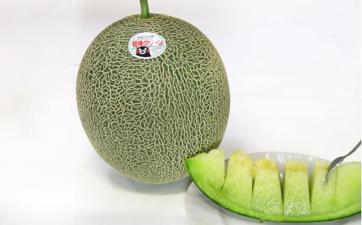 熊本県産 肥後グリーン メロン 特大玉1玉 (2.4kg以上)