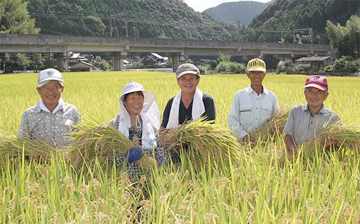 【定期便 3回】令和2年産 熊本県産 鶴喰米 つるばみまい 5kg お米